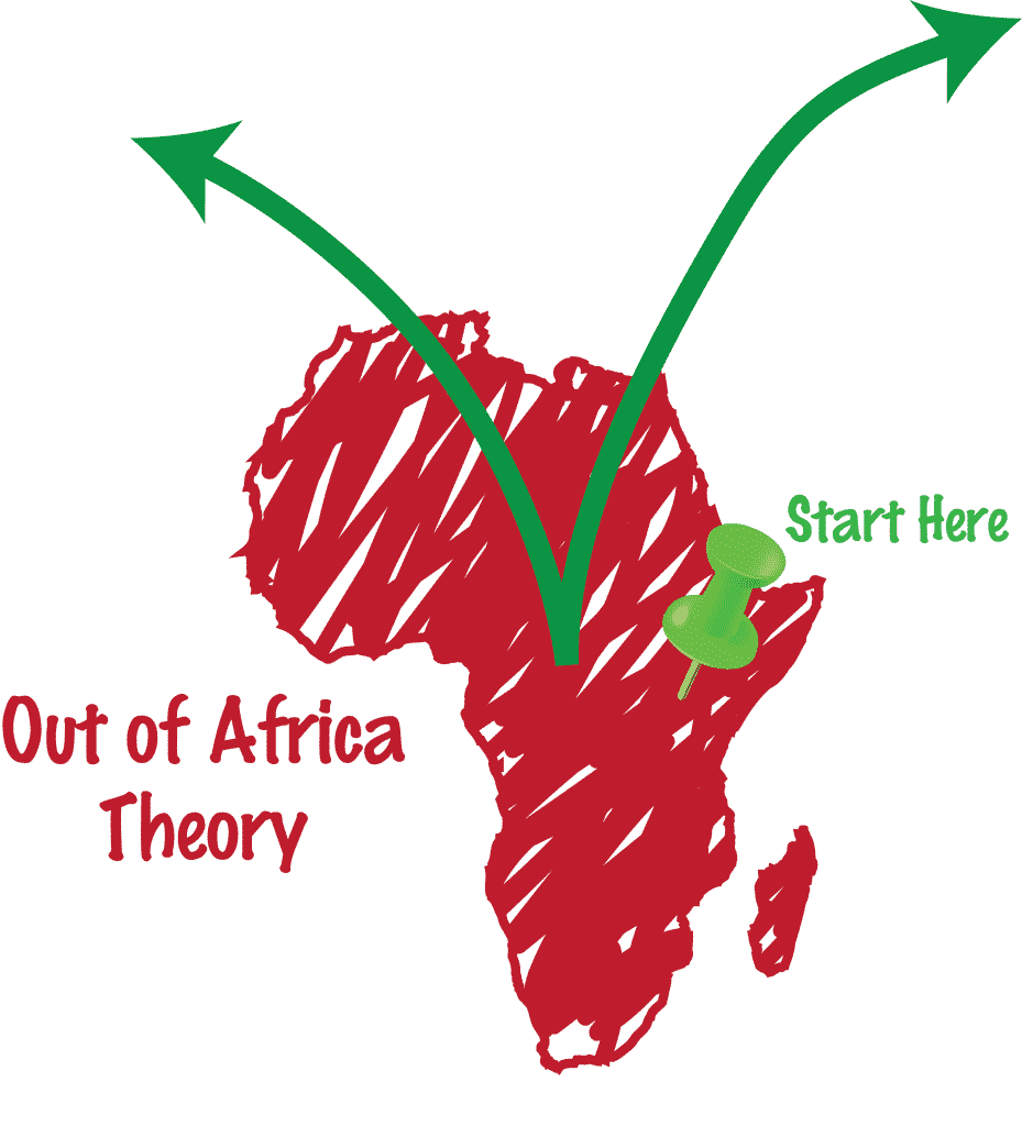 Diagram of the Out of Africa Theory