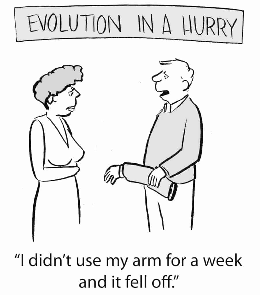 humorous visual - evolution in a hurry