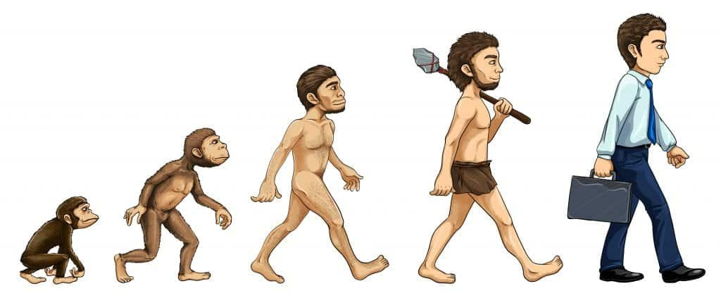 harness the modality effect with this evolution diagram
