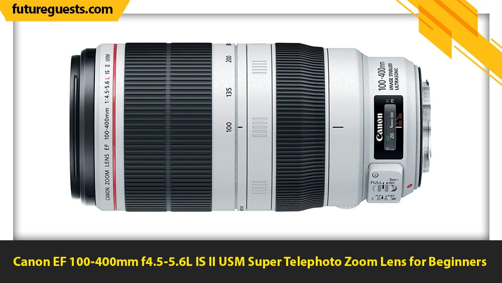 best lenses for wildlife photography Canon EF 100-400mm f4.5-5.6L IS II USM Super Telephoto Zoom Lens