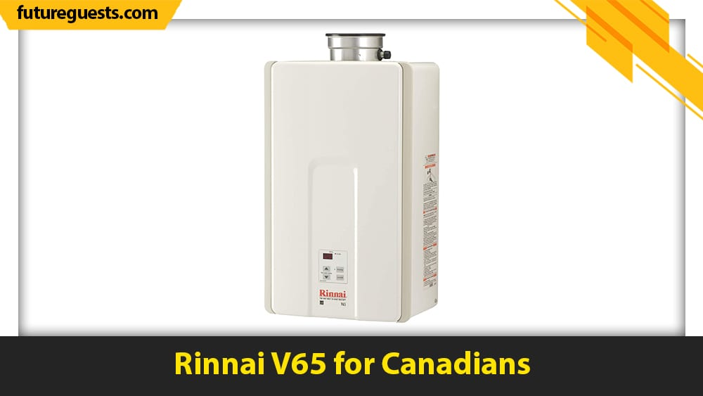 best small tankless water heater Rinnai V65