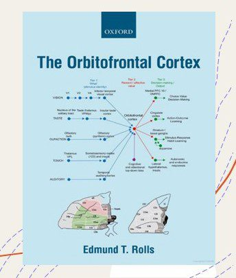 """This is the book cover of Neuroscientist and Professor Edmund T. Rolls titled, """"The Orbitofrontal Cortex"""" (2020). The book is Oxford published. It has an anatomy drawing of the frontal cortex at the bottom with a literal mind map above it showing it's function and processes."""